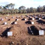 Friedhof bei Katro Titros