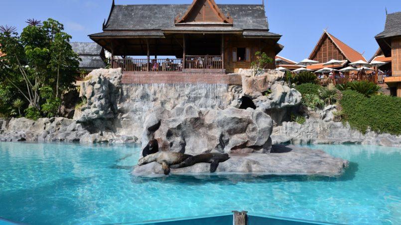 Teneriffa 2016 - Der Siam Park