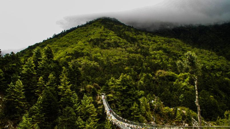 Eine Hängebrücke am Weg