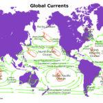 Global Currents and Microplastics