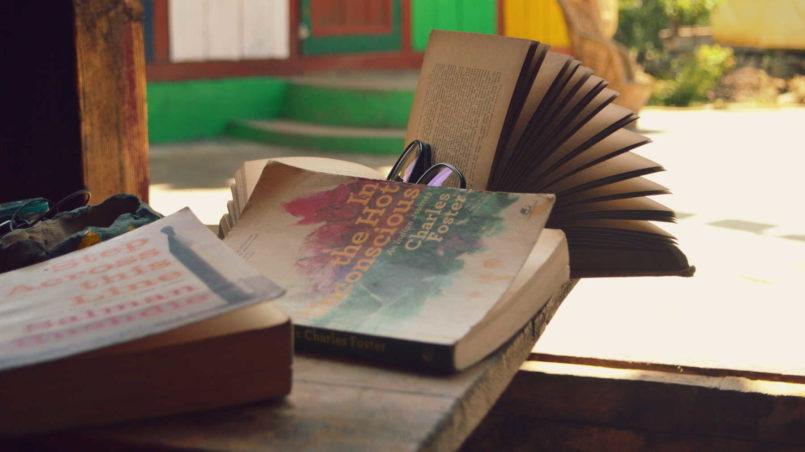 Die Liebe zum Lesen
