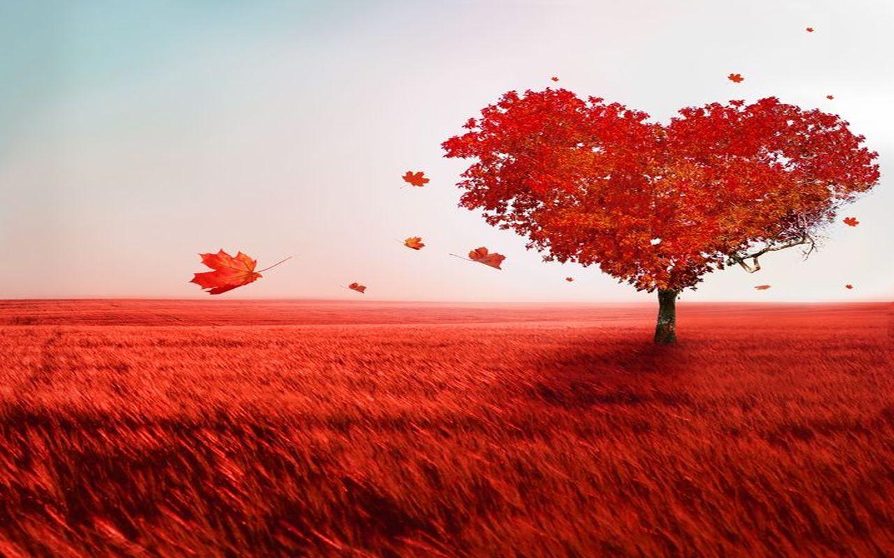 Must see Wallpaper Love Scenery - tree_of_love  Gallery_51875.jpg