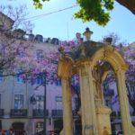 Ausflug nach Portugal: Lissabon 1