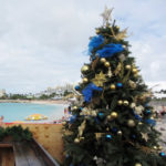 Maho_Beach_with_Christmas_Tree_(6543935627)