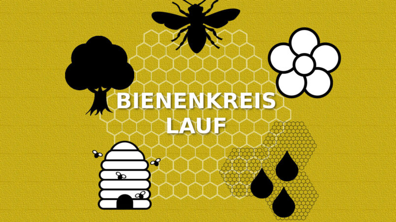 Bee circulation